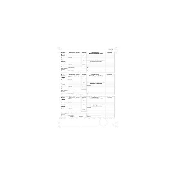 250 MODELLI MECCANOGR. CARICO/SCARICO RIFIUTI X DETENTORI (A) 12X24 E2866