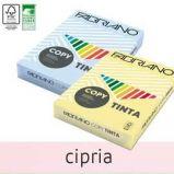 CARTA COPY TINTA A4 80GR 500FG COL.TENUE CIPRIA